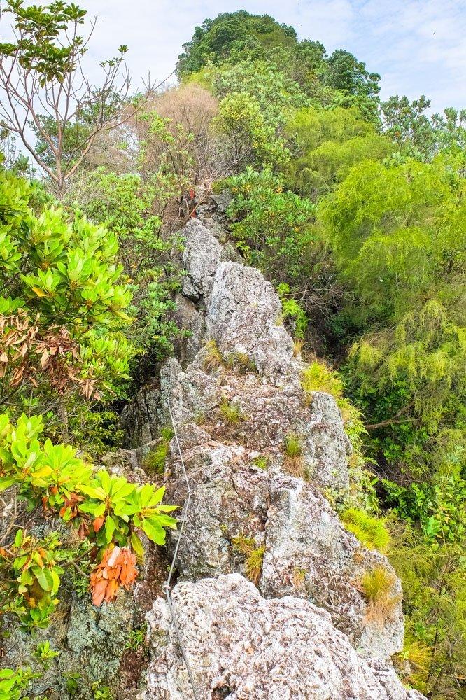 Bukit Tabur hiking trail