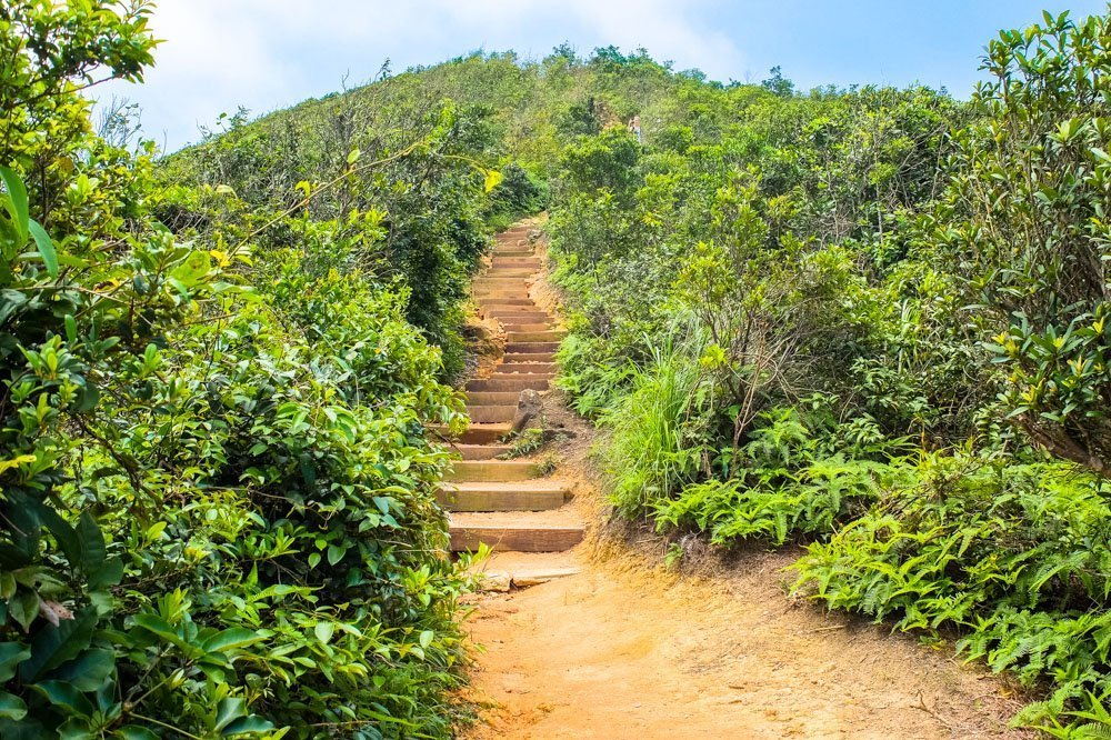 Steps on hiking trail in Hong Kong