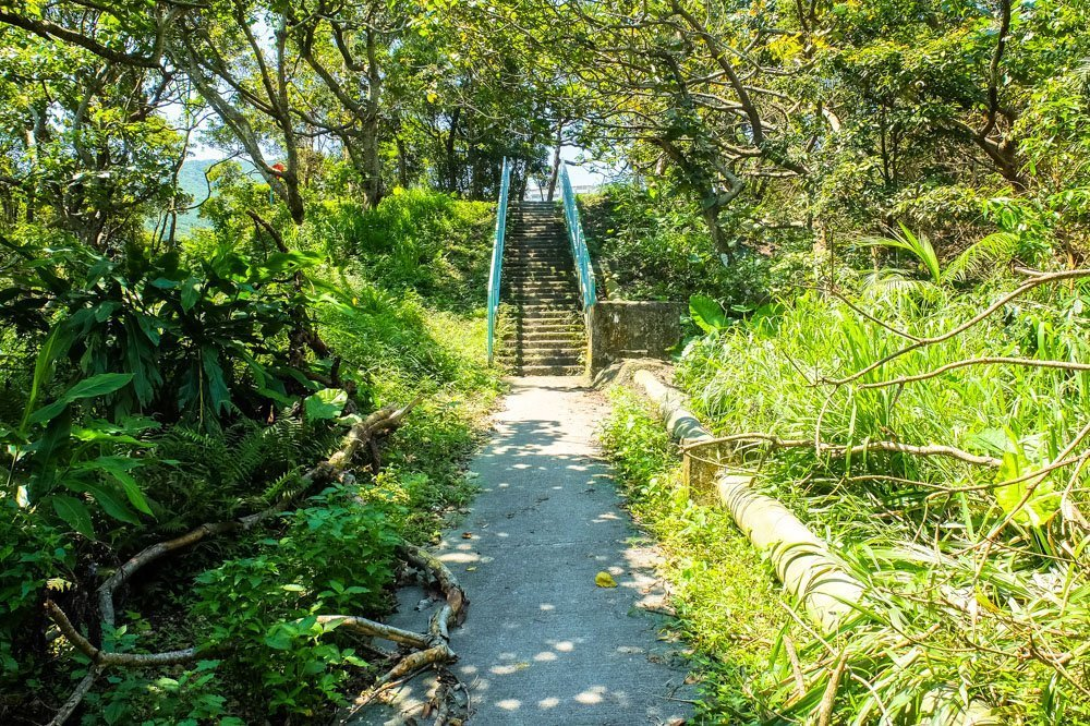 Walking to the Dragon's Back Hike, Hong Kong
