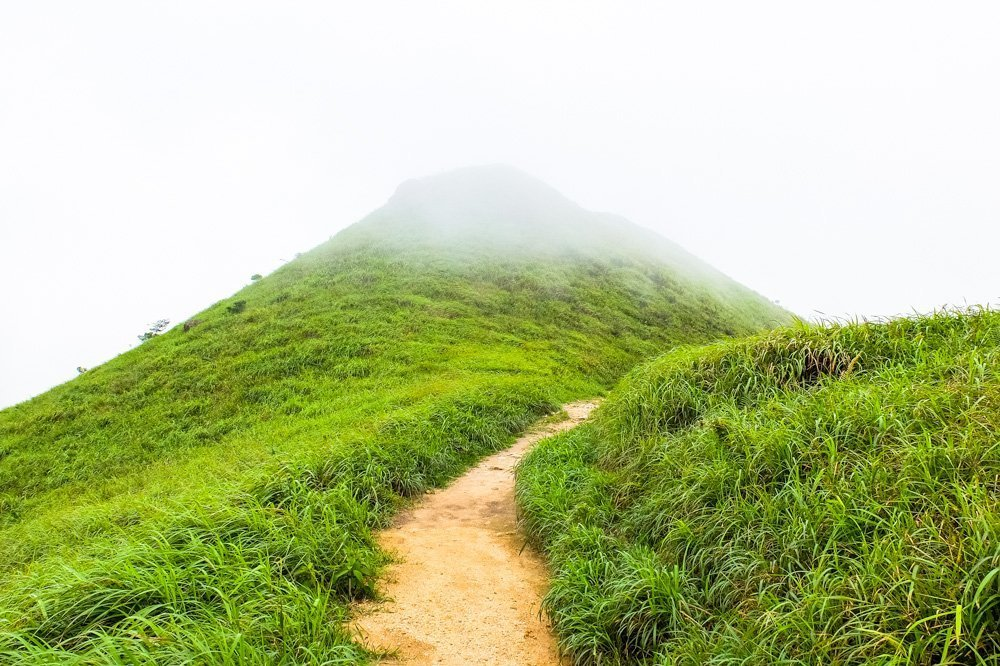 Trail - Lantau Peak Hike