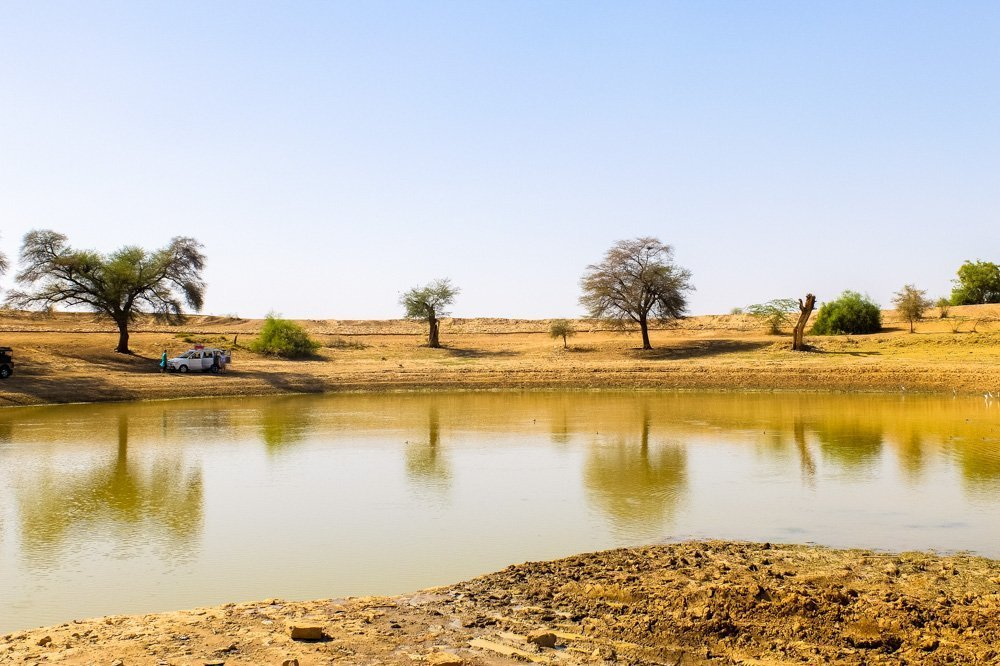 Lake near desert in Jaisalmer