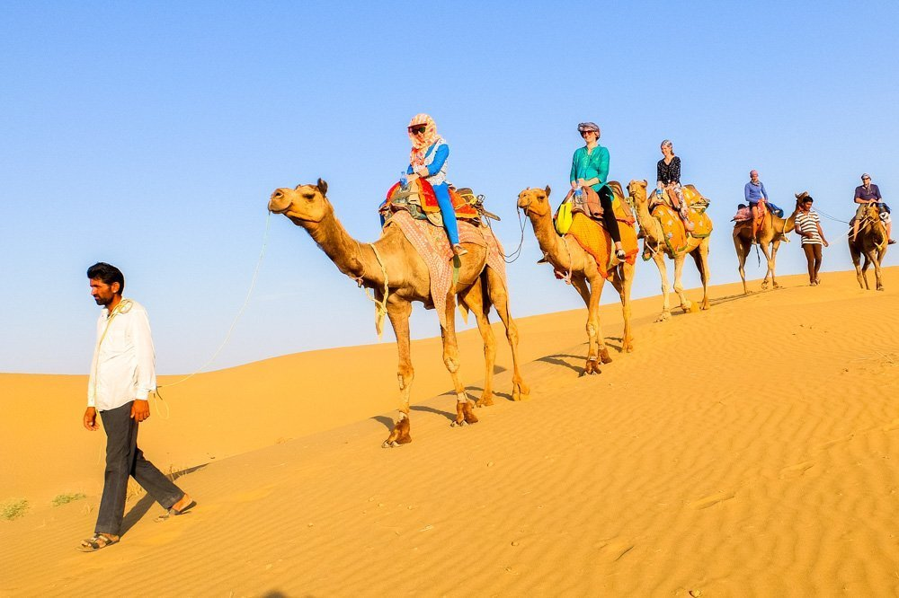 People on camels in desert in India