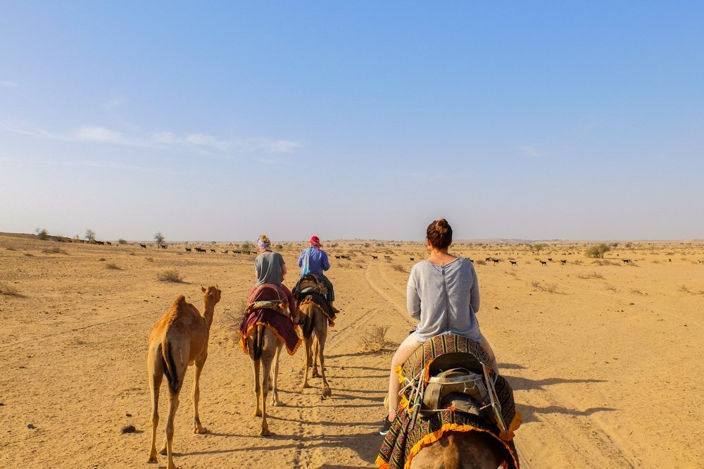 Riding camels in India - Jaisalmer Desert Safari