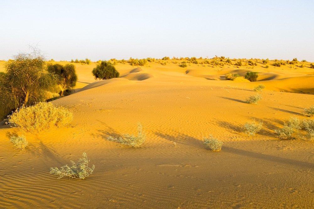 Sand dunes in India