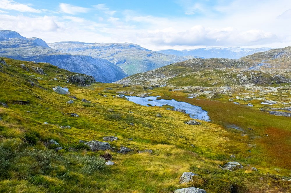 Green grass in the mountains of Norway