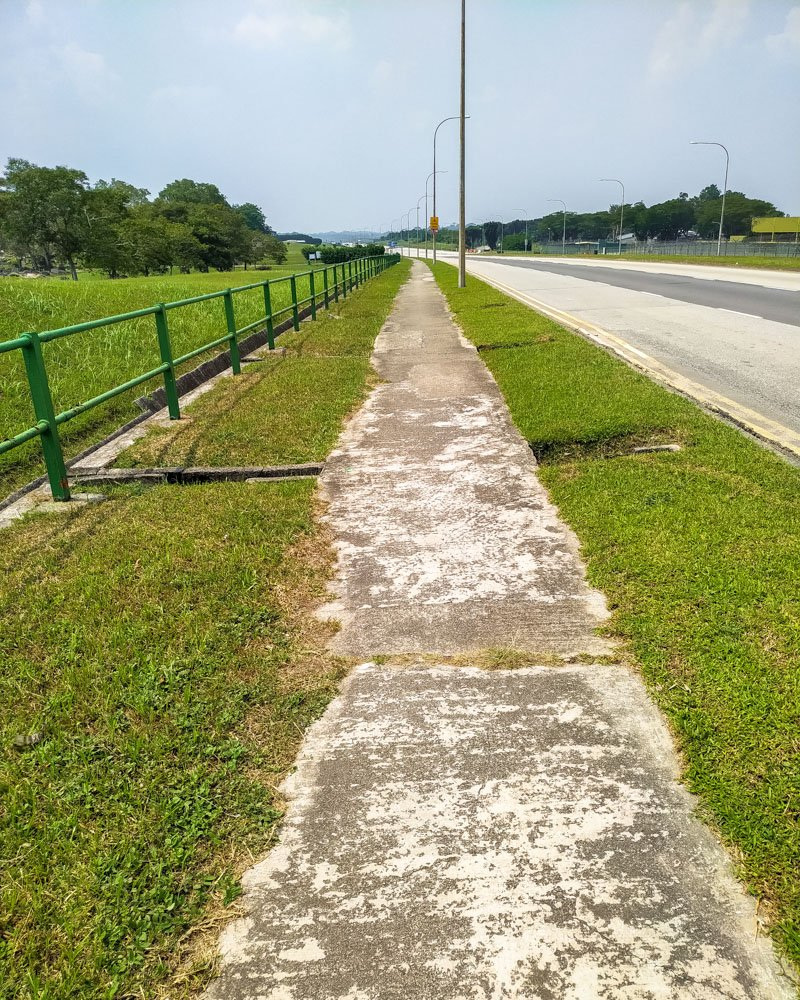 Bicycle path in Singapore