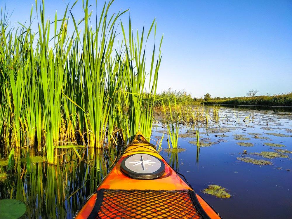 Kayaking on small river