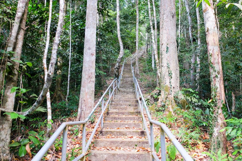 Stairs to Gunung Raya