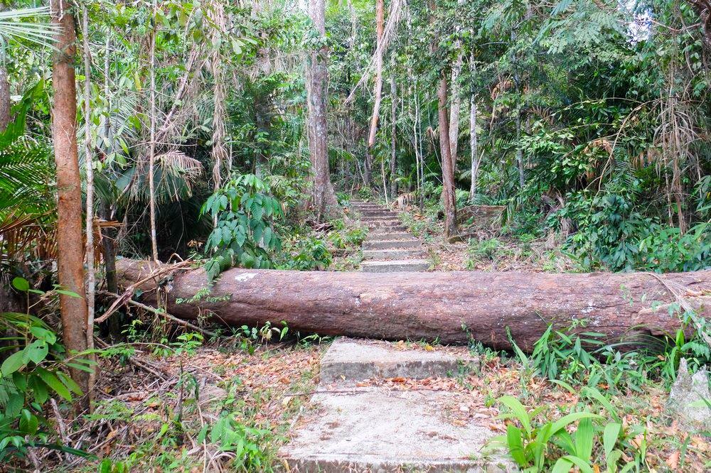 Walking up Gunung Raya in Langkawi