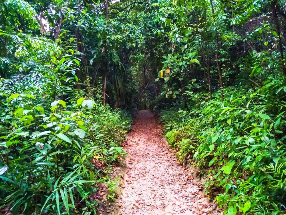 Imbiah Nature trail