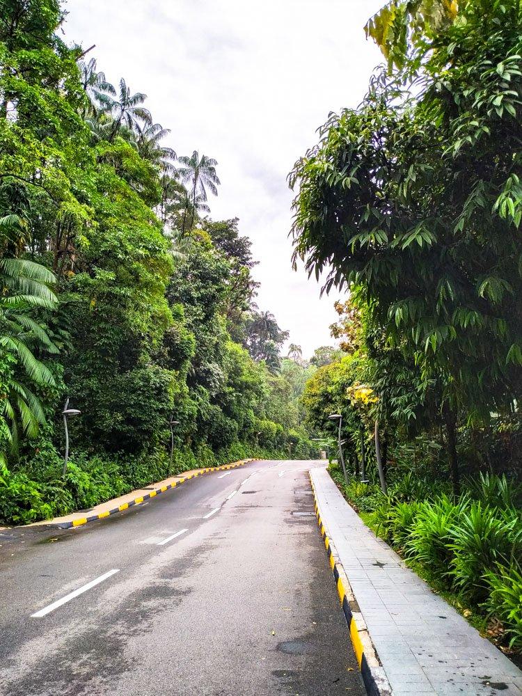 Road on Sentosa