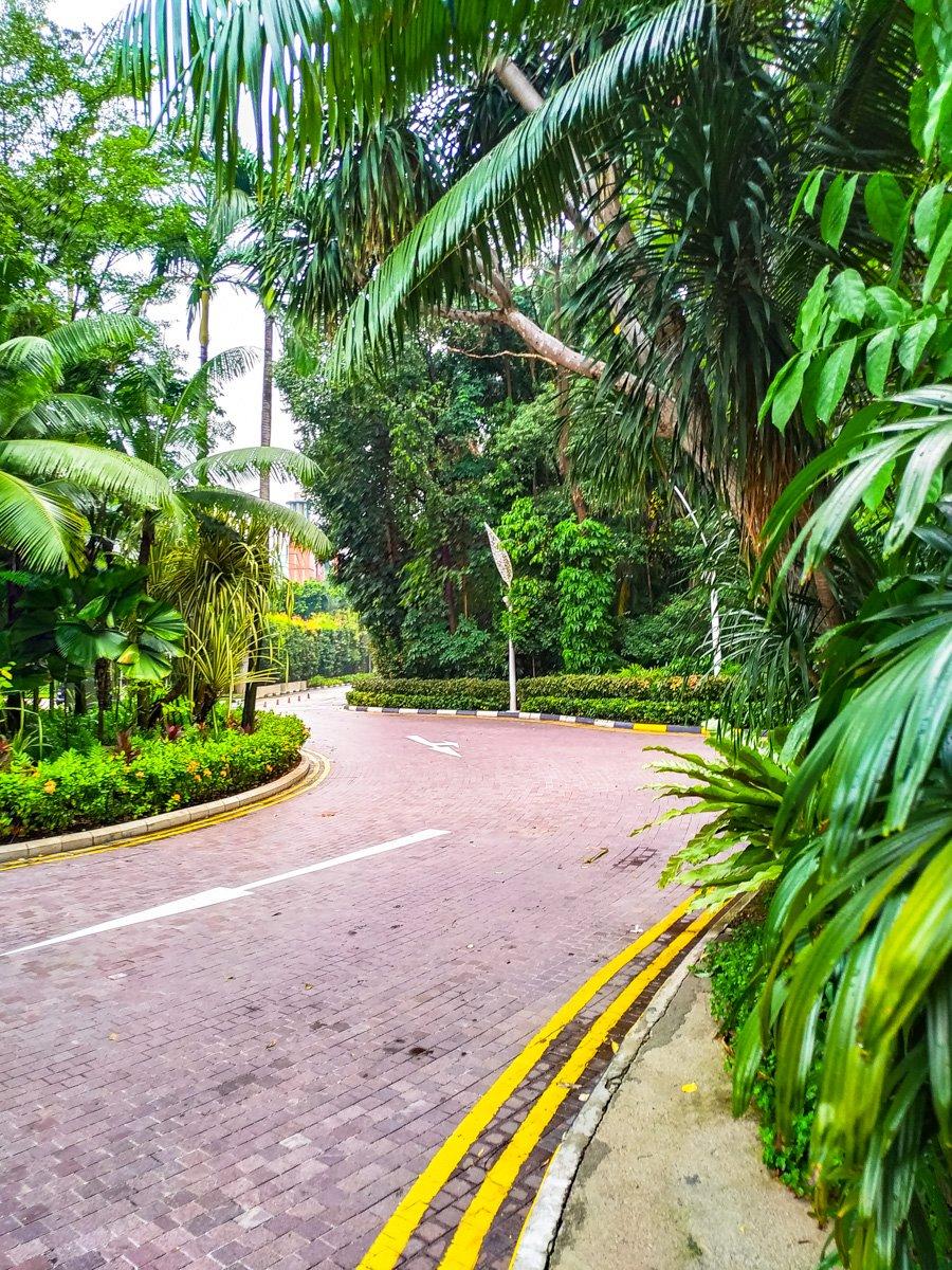 Roads and jungle on Sentosa Island, Singapore