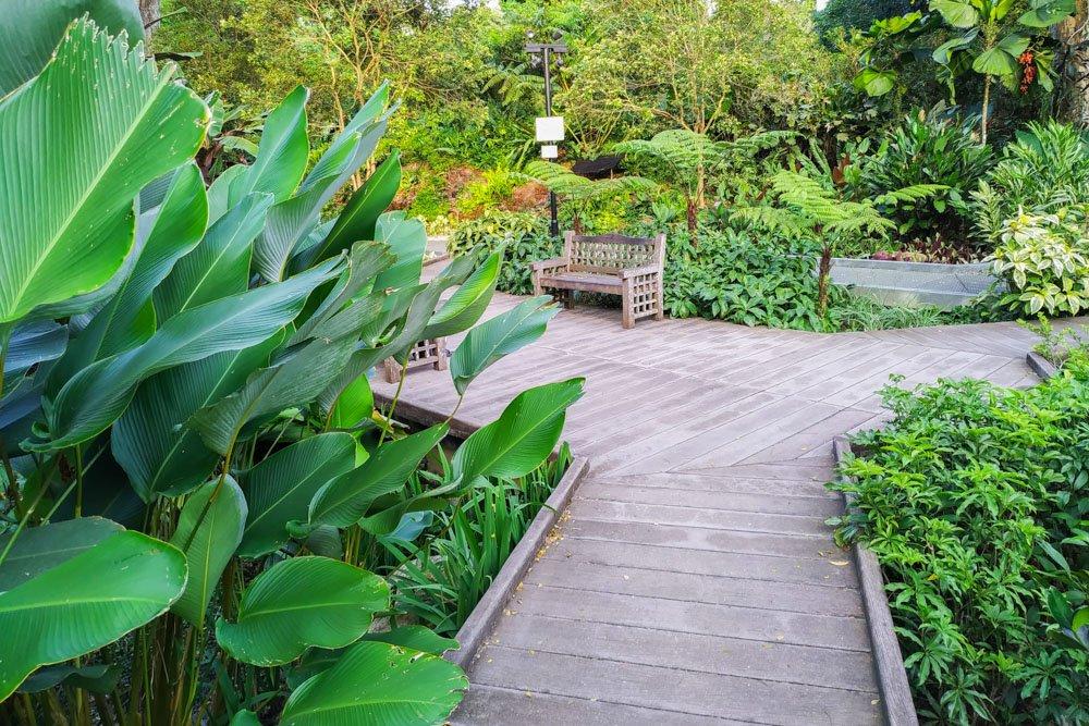 Singapore Botanic Gardens pathway