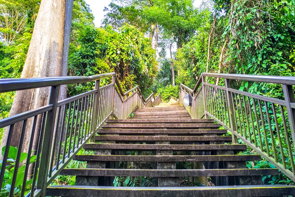 Stairs - Hiking in Singapore