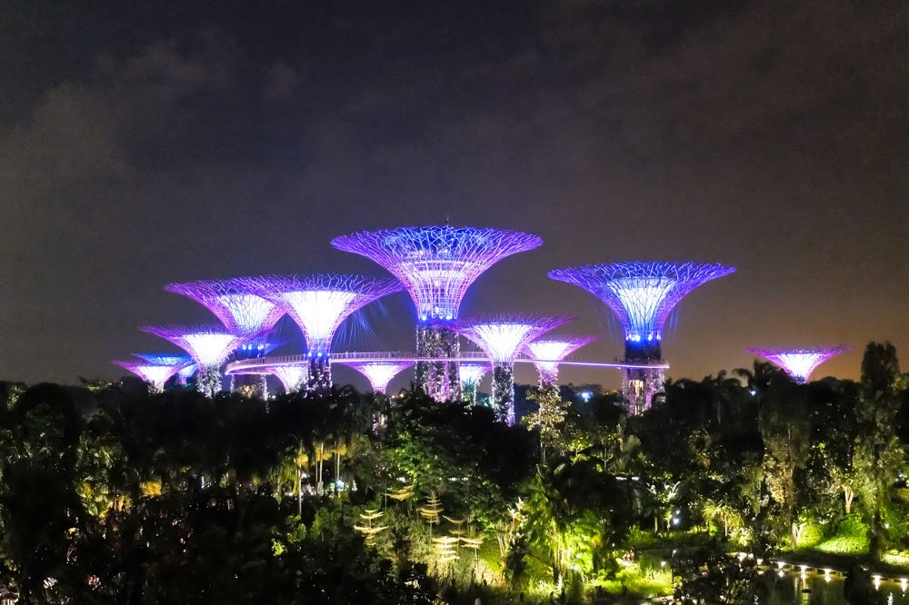Super tree grove in Gardens by the Bay park, Singapore