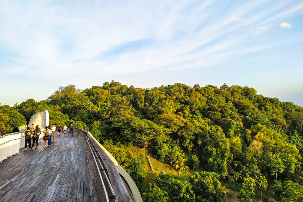 The Henderson Waves pedestrian bridge