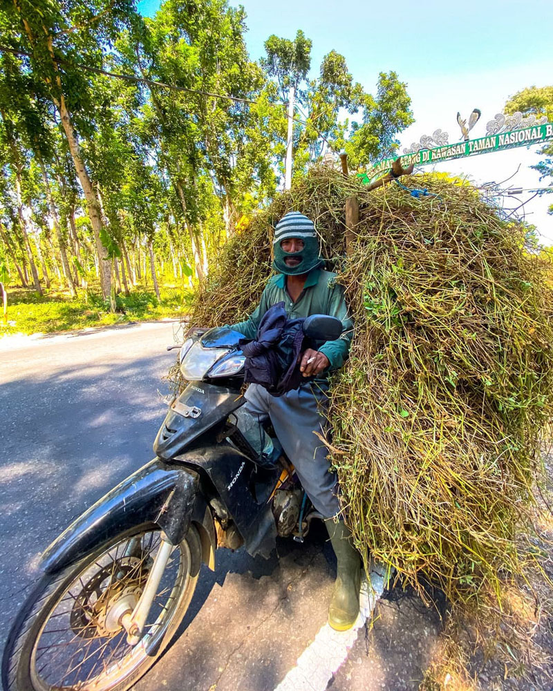 Man riding a motorbike in Bali
