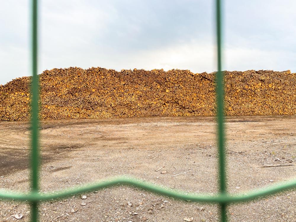 A huge pile of woods in Voleri