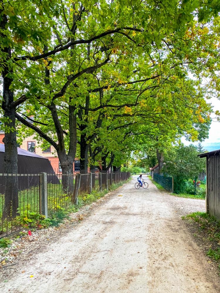 A road in Kundzinsala, Riga