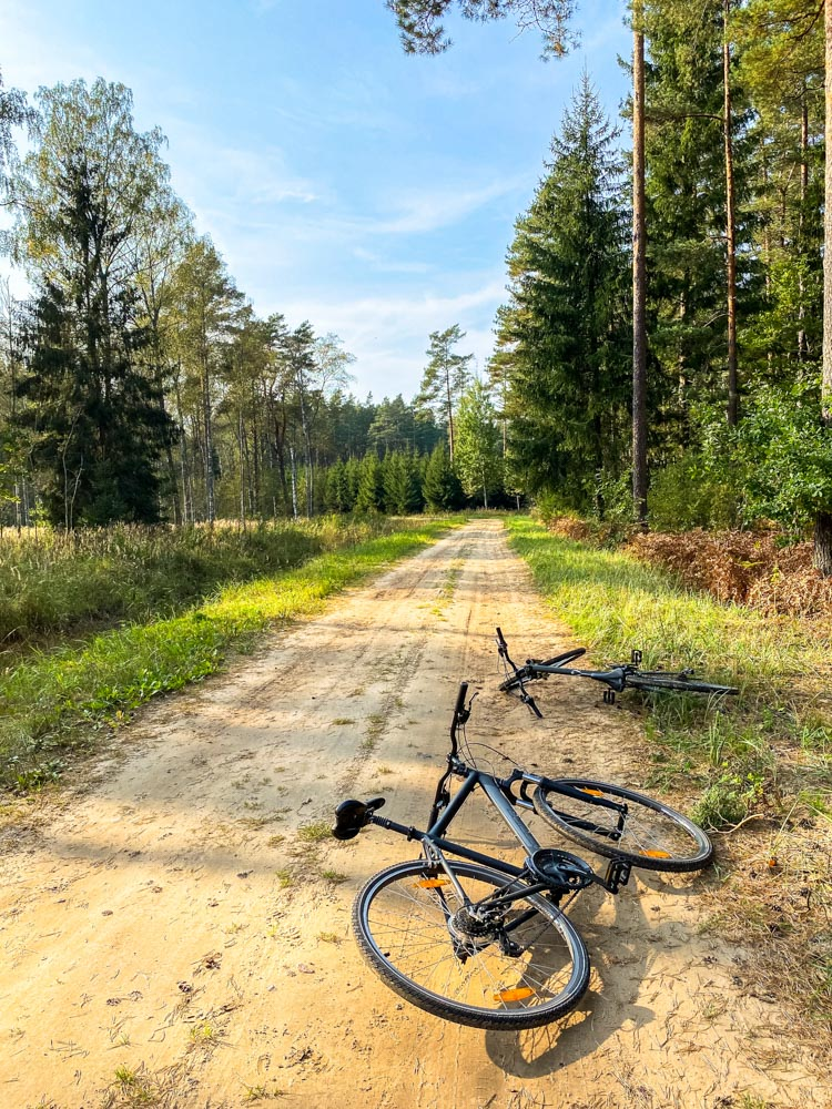 Bicycles on a forest road near Riga