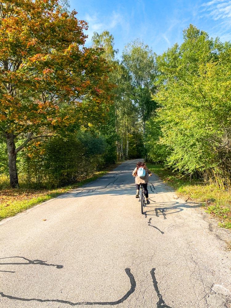 Country road near Riga