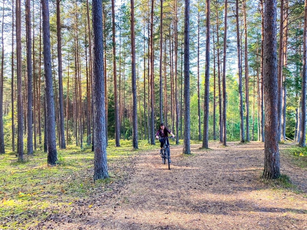 Cycling in the forest in Ogre Blue Hills