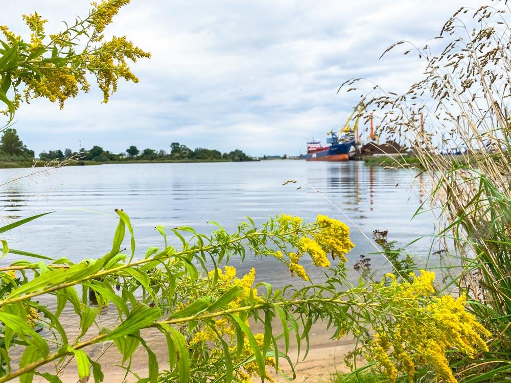 Daugava river coastline