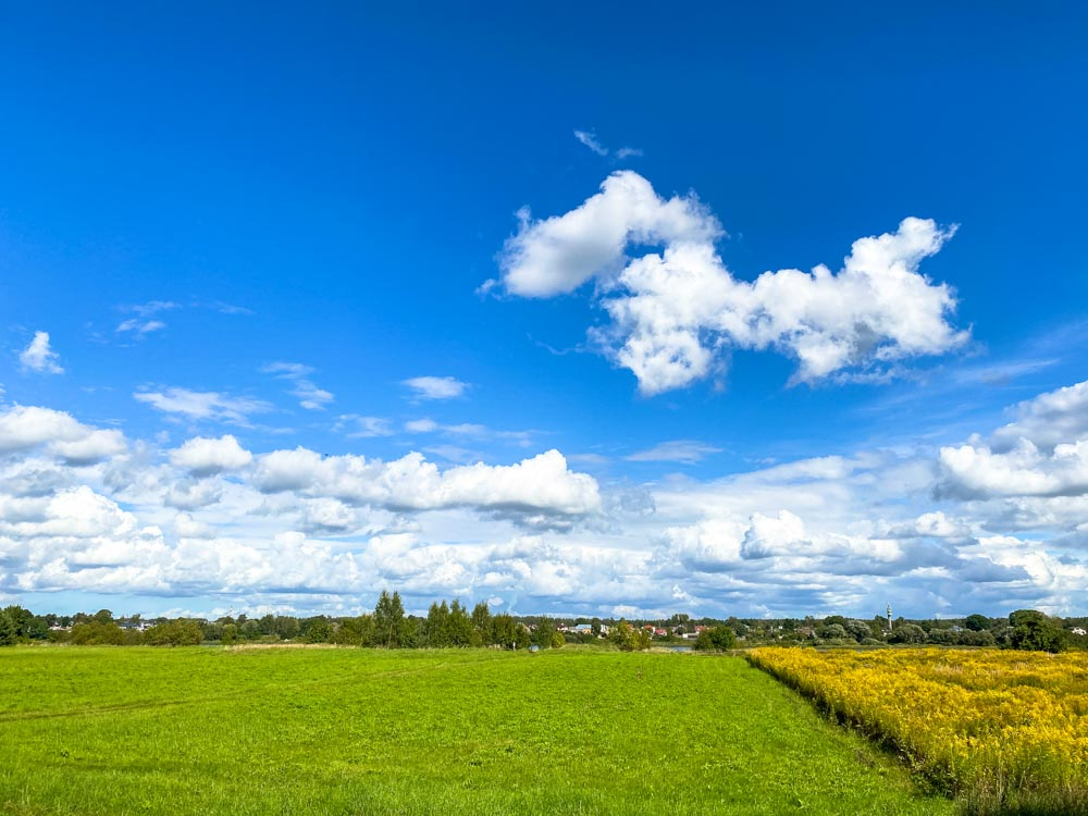 Fields on island Dole