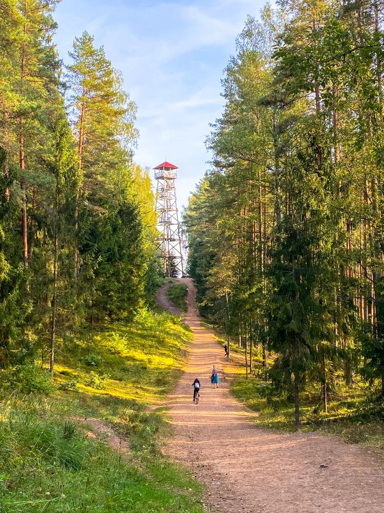 Road to Ogre Blue Hills Observation Tower