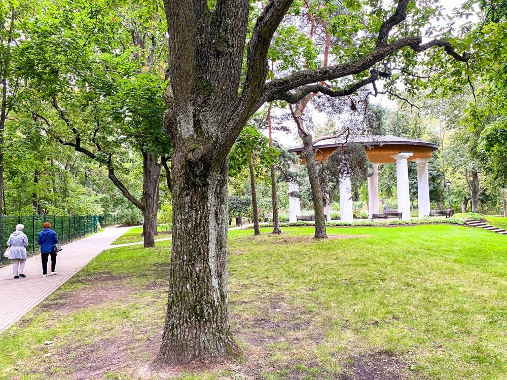 Ziemelblazma park