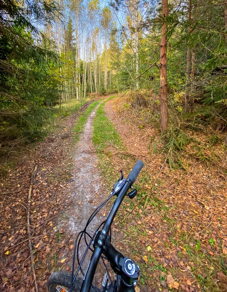 Cycling on a forest road in autumn