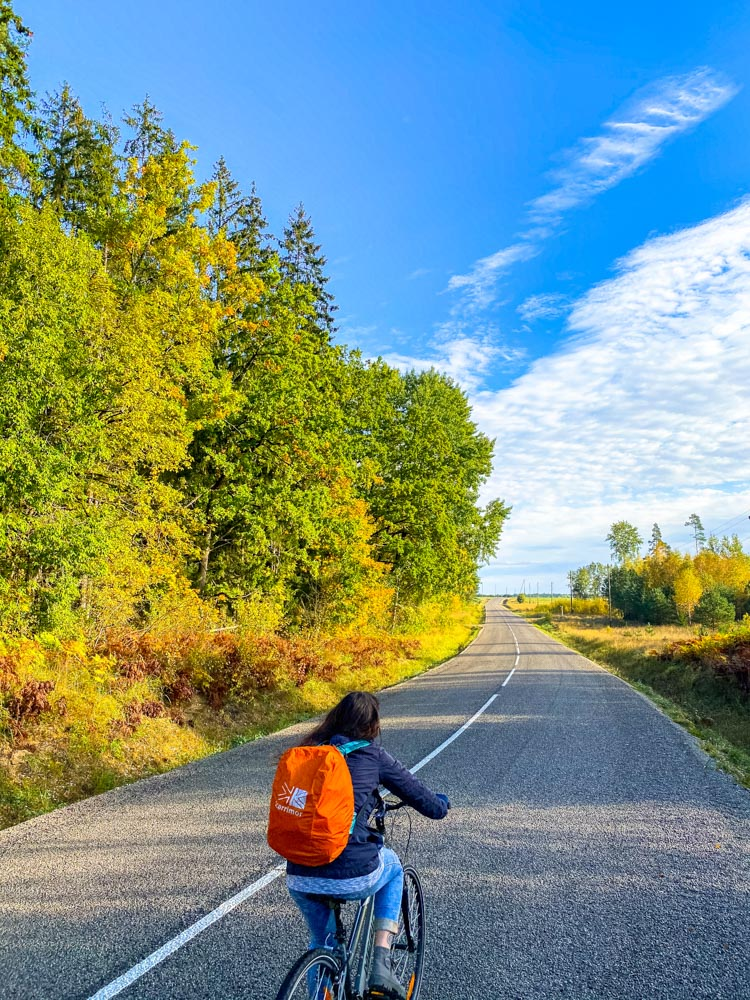 Cycling on a good road - Autumn sights