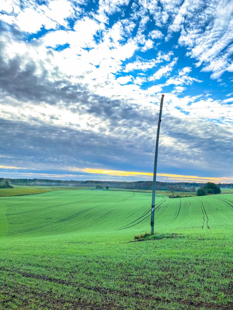 Green fields and electricity pole in Latvia