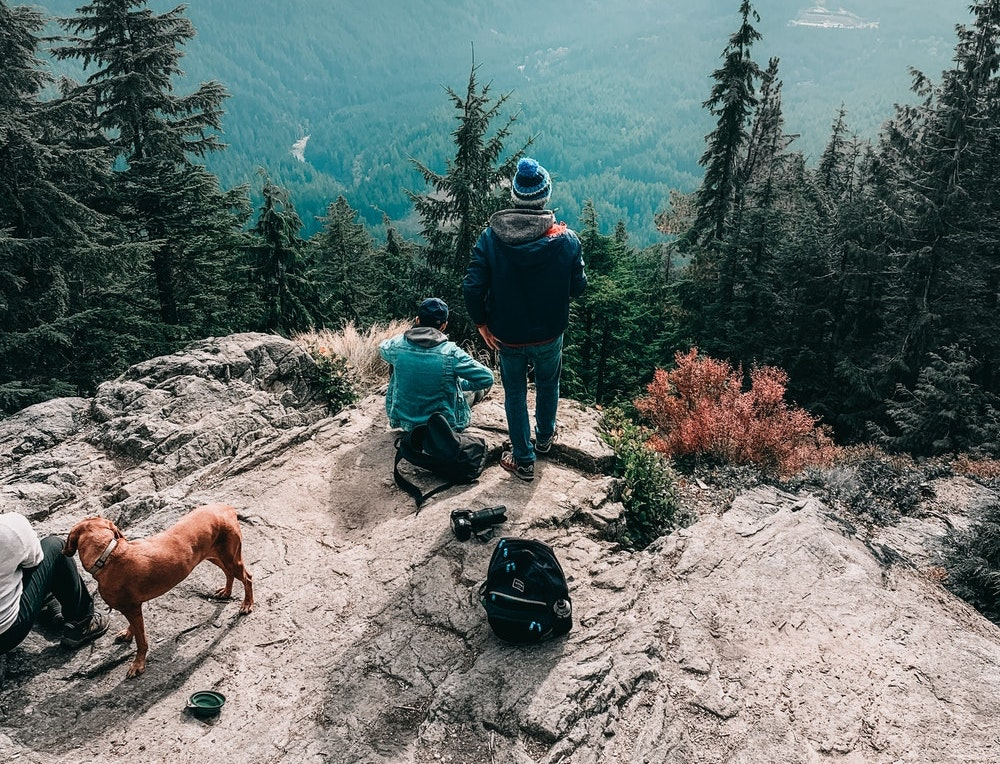 Hikers with a dog on a mountain