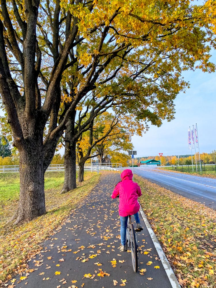 Young girl cycling on a bike path