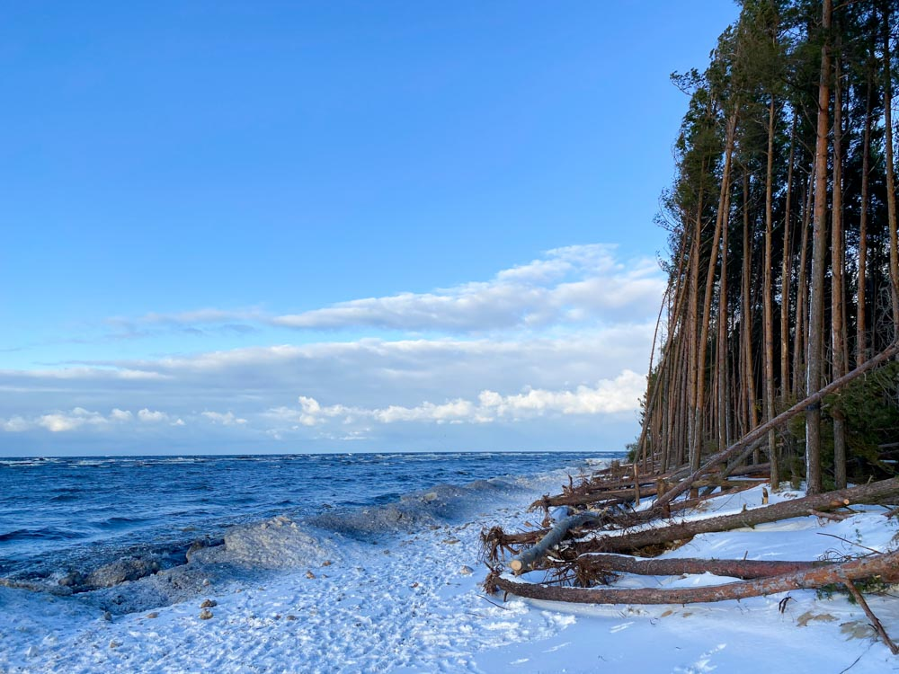 Beach during the winter in Latvia