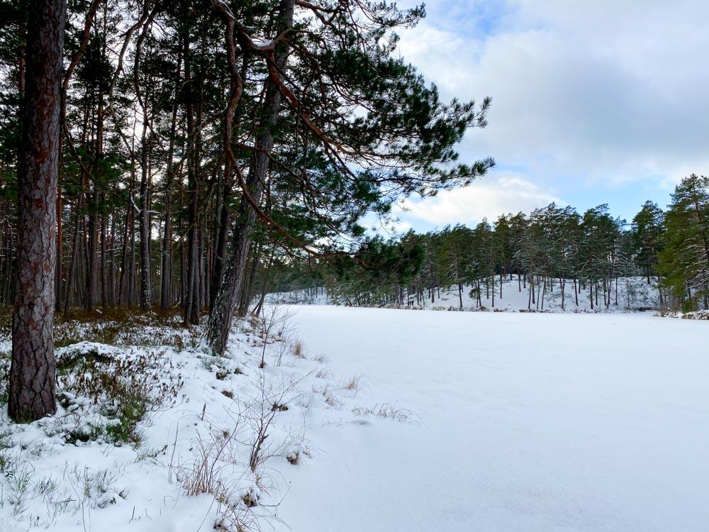 Frozen lake in Lilaste