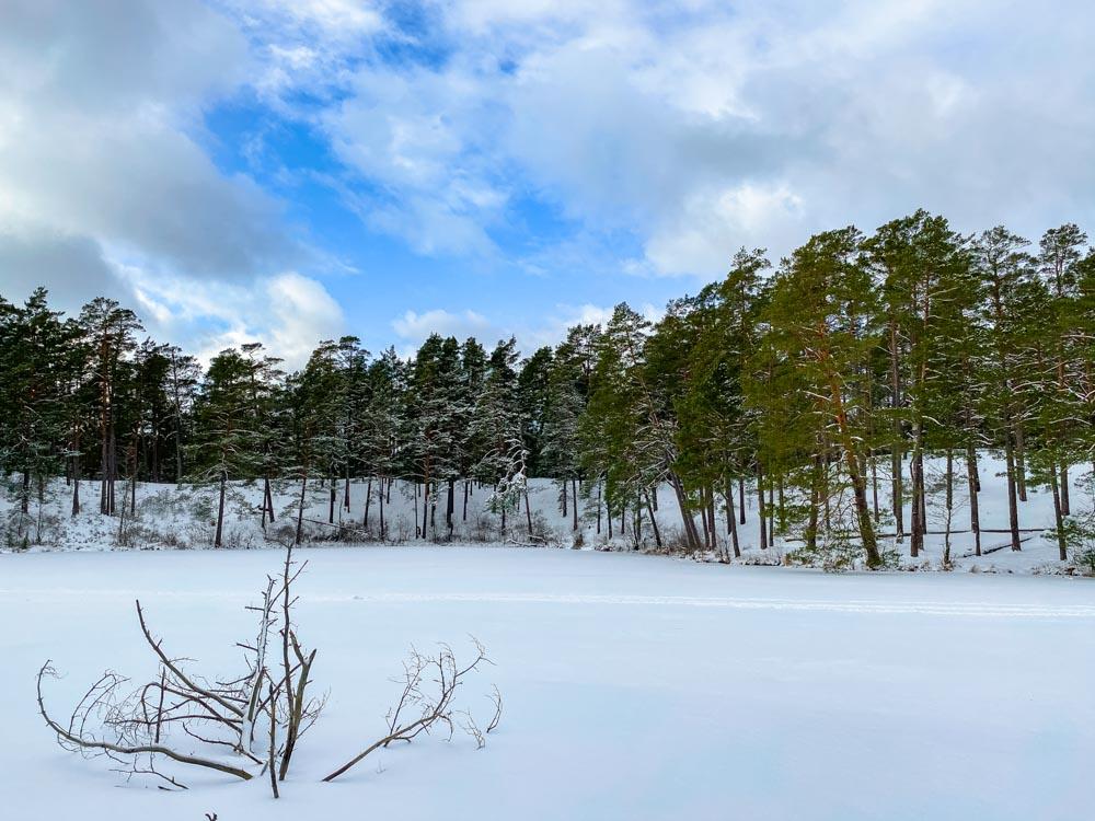 Garezers lake during the winter