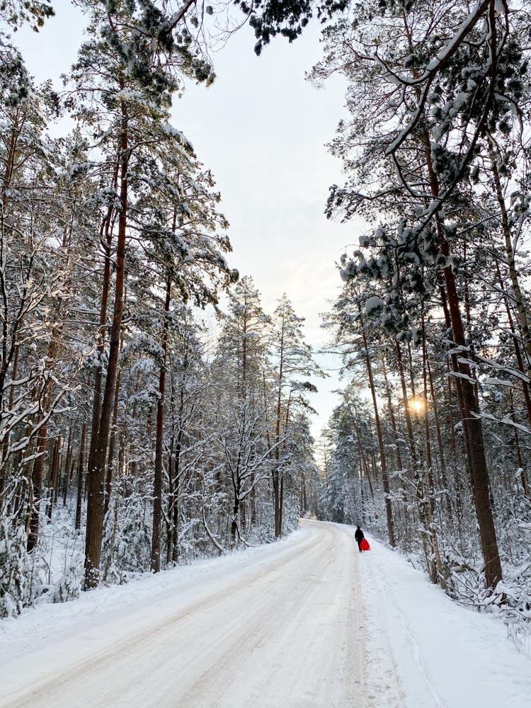 Road from Garkalne