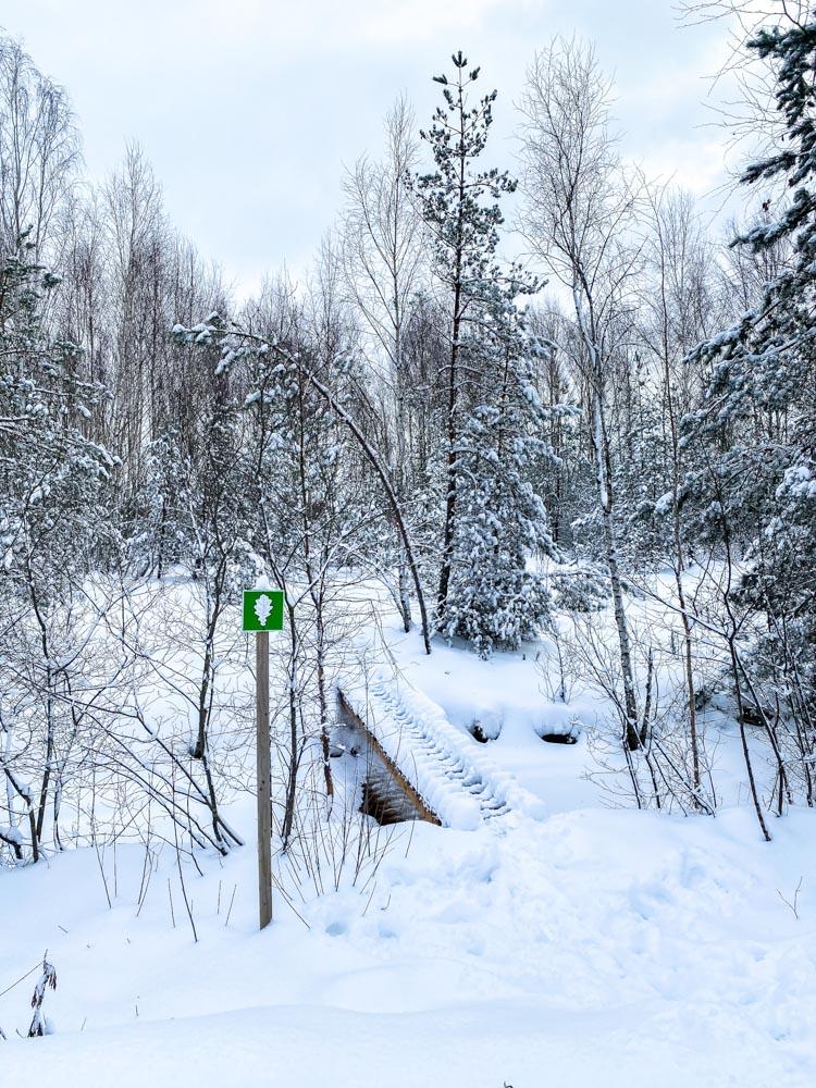 Trail sign in Melna Ezera Swamp