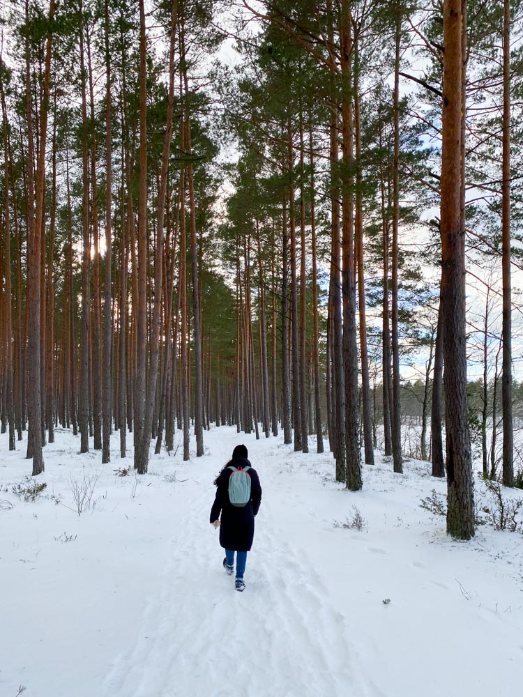 Walking from Lilaste to Gauja