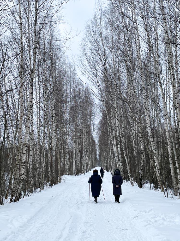 Babushkas walking in the forest in Ziepniekkalns
