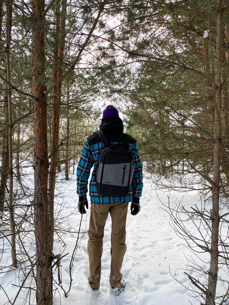 Walking in the forest near Ziepniekkalns