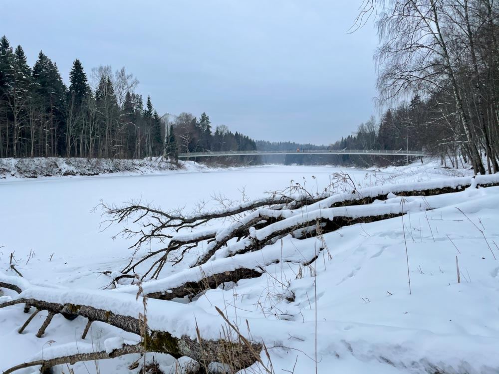 Frozen river Gauja