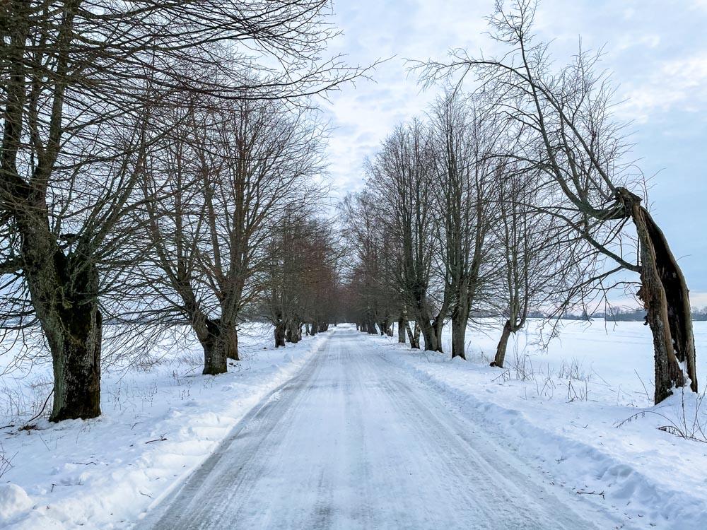 Rural road near Sigulda