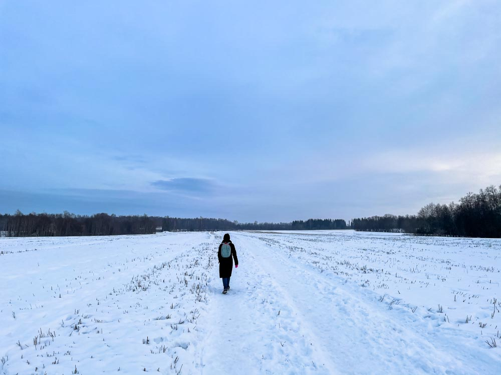 Walking across a snowy field