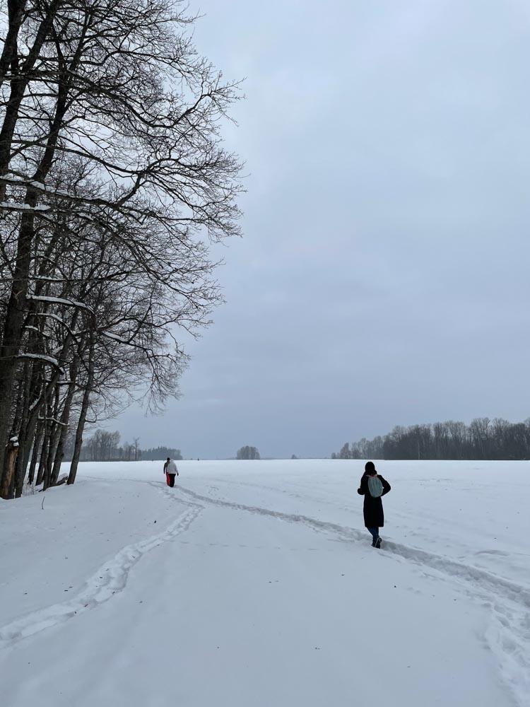 Walking to Krimulda
