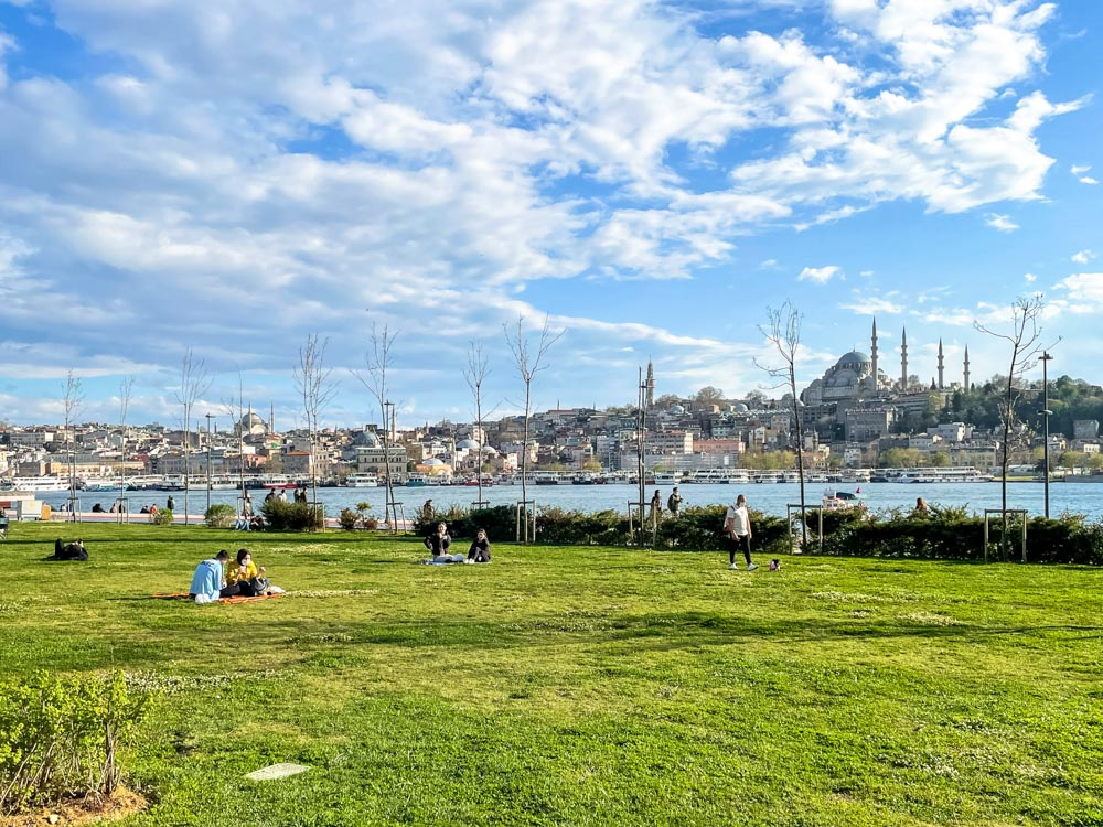 Green grass in Istanbul
