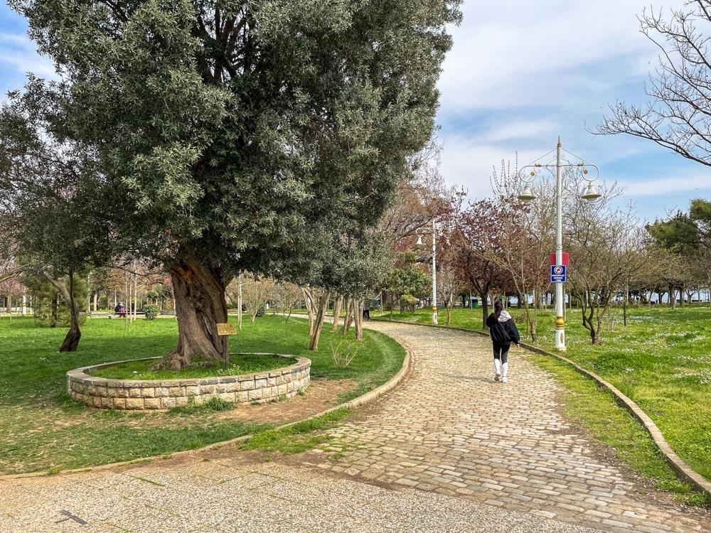 Pathways in Fenerbahce Park