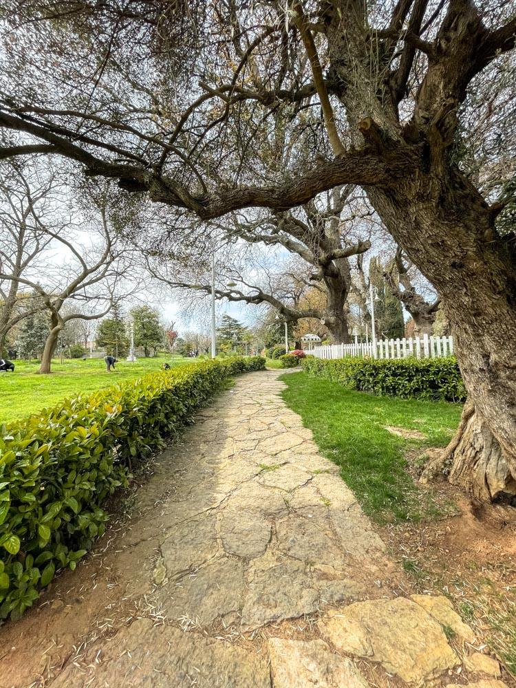 Walks in Fenerbahce Park